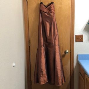 Beautiful Rare Prom Dress / Evening Gown